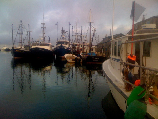 martha's vineyard fishing charters